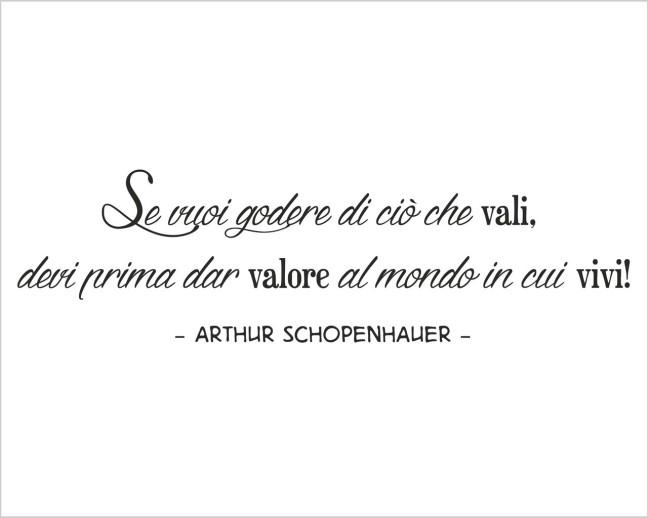 schopenhauer-15